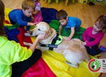 huvosvolgy_kutyaterapia_32.jpg