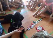 kutyas_tabor_20.jpg