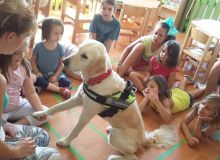 kutyas_tabor_29.jpg
