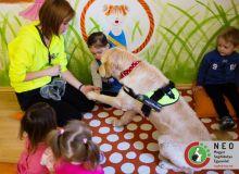 huvosvolgy_kutyaterapia_13.jpg